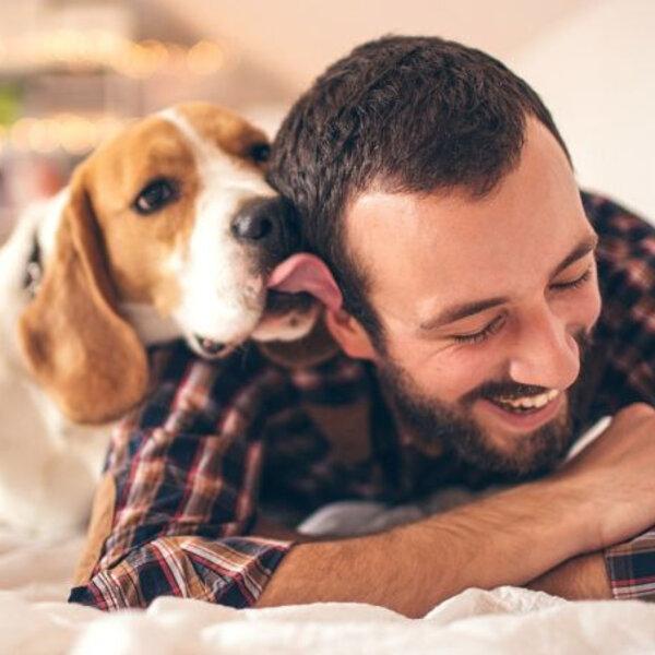Muita gente adquiriu um pet durante a pandemia, período em que estamos em casa mais tempo do que o normal. É preciso ensinar seu animal a ficar sozinho, para quando tudo isso passar!