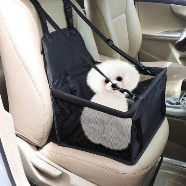 Com a proximidade das férias escolares, muitas famílias planejam viajar e levar seus pets. Você sabe a maneira correta de levar seu animal de estimação no carro?