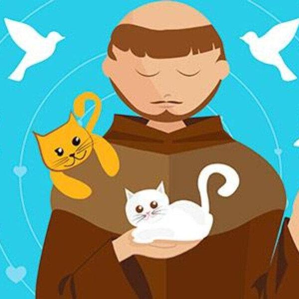 Hoje, 4 de outubro, é Dia de São Francisco, protetor dos animais!