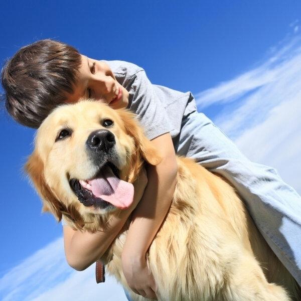 Conviver com um cão pode melhorar a sua qualidade de vida!
