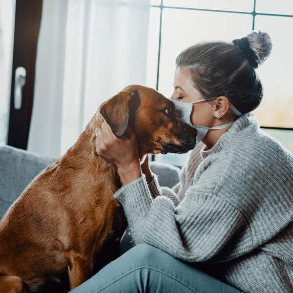 Saiba os cuidados que a pessoa que estiver com Covid-19 deve ter com seu animal de estimação