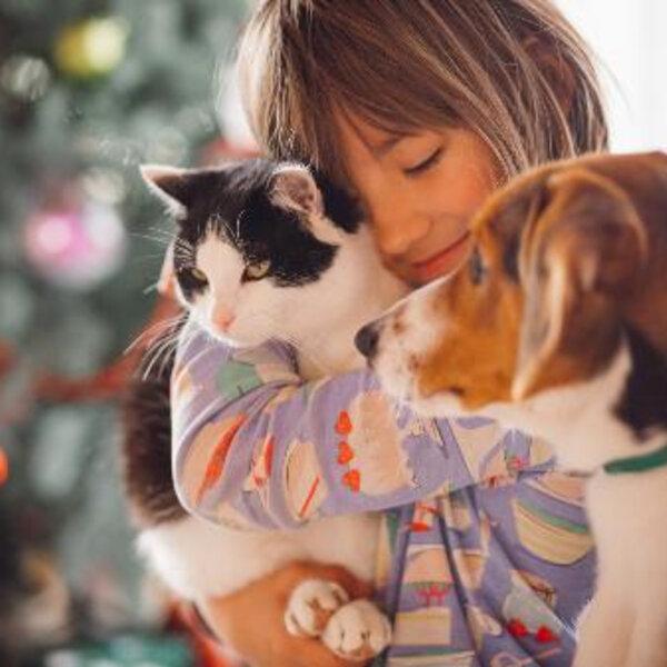 Existe um animal de estimação ideal para a sua família?