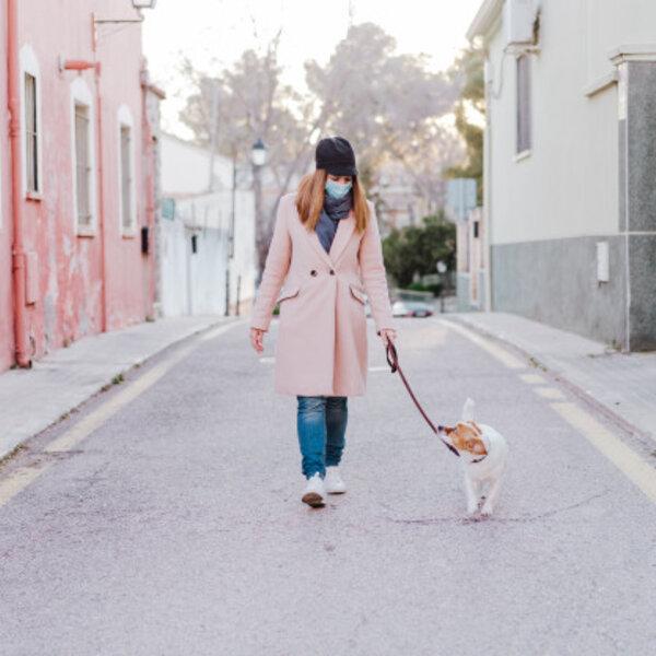 Os cães aprenderam a ler nossa linguagem corporal e a olhar nossas expressões faciais para entender o que acontece na relação e nos ambientes. E agora, que estamos todos usando máscaras?