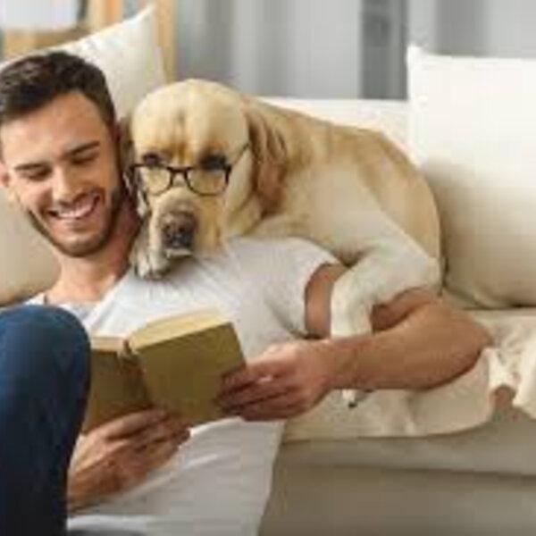 Procure manter um ambiente calmo, mesmo que seja difícil neste momento, para não confundir ainda mais os animais, e isso ajuda na harmonia da nossa família também