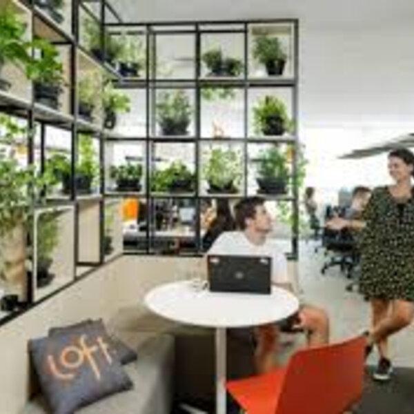 Entrevista com Bartolomeu Cavalcanti, gerente-geral da Loft no Rio, sobre o novo consumo imobiliário no país. Pesquisa revela ainda que os jovens entre 25 e 34 anos estão na busca de imóveis mais compactos para comprar