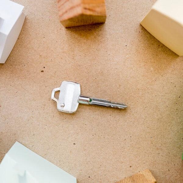 Saiba como adquirir um imóvel residencial ou comercial via leilão