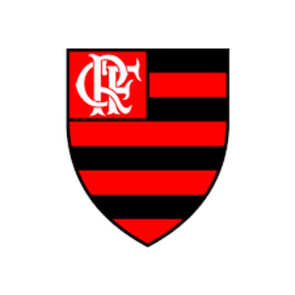 Flamengo na final da Libertadores