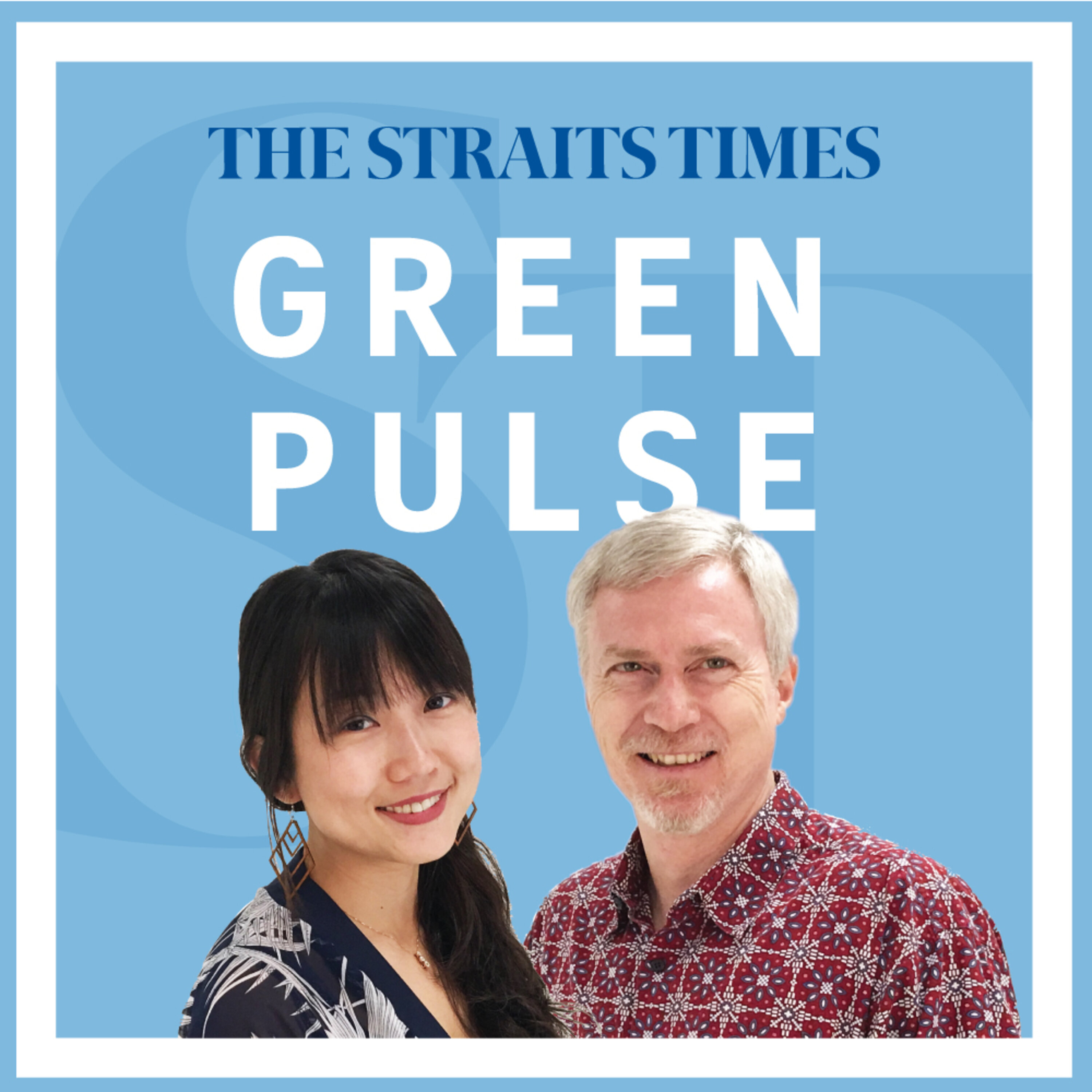 Will cleaner air in South-east Asia during Covid-19 lockdowns last? - Green Pulse Ep 25