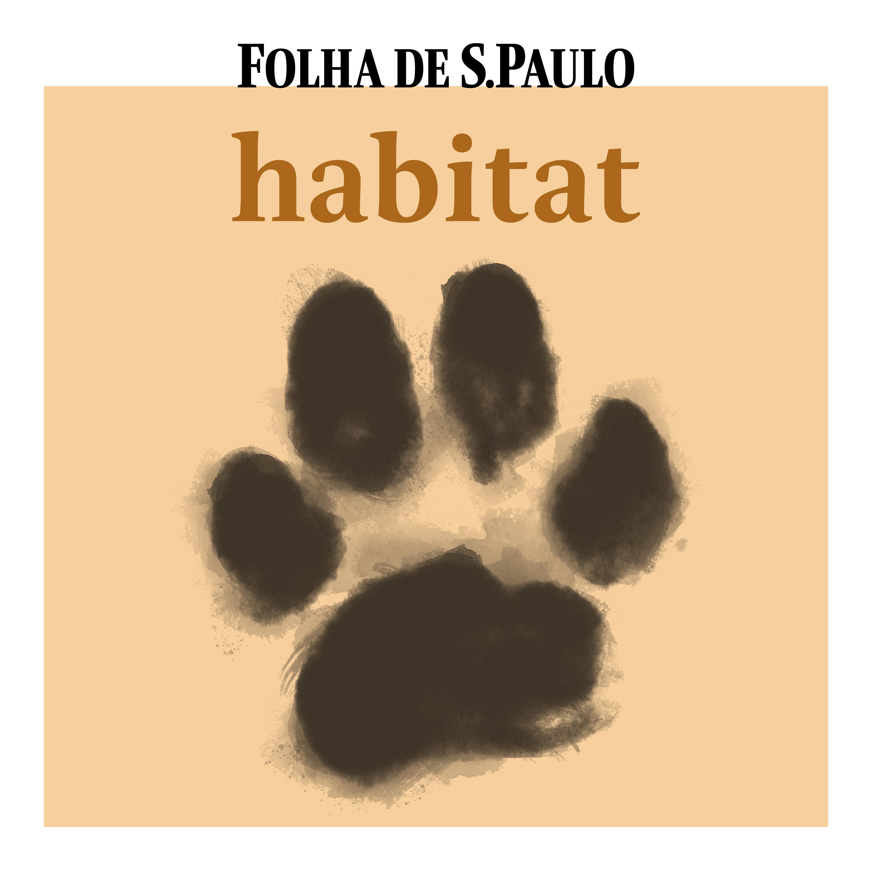 Conheça o podcast Habitat