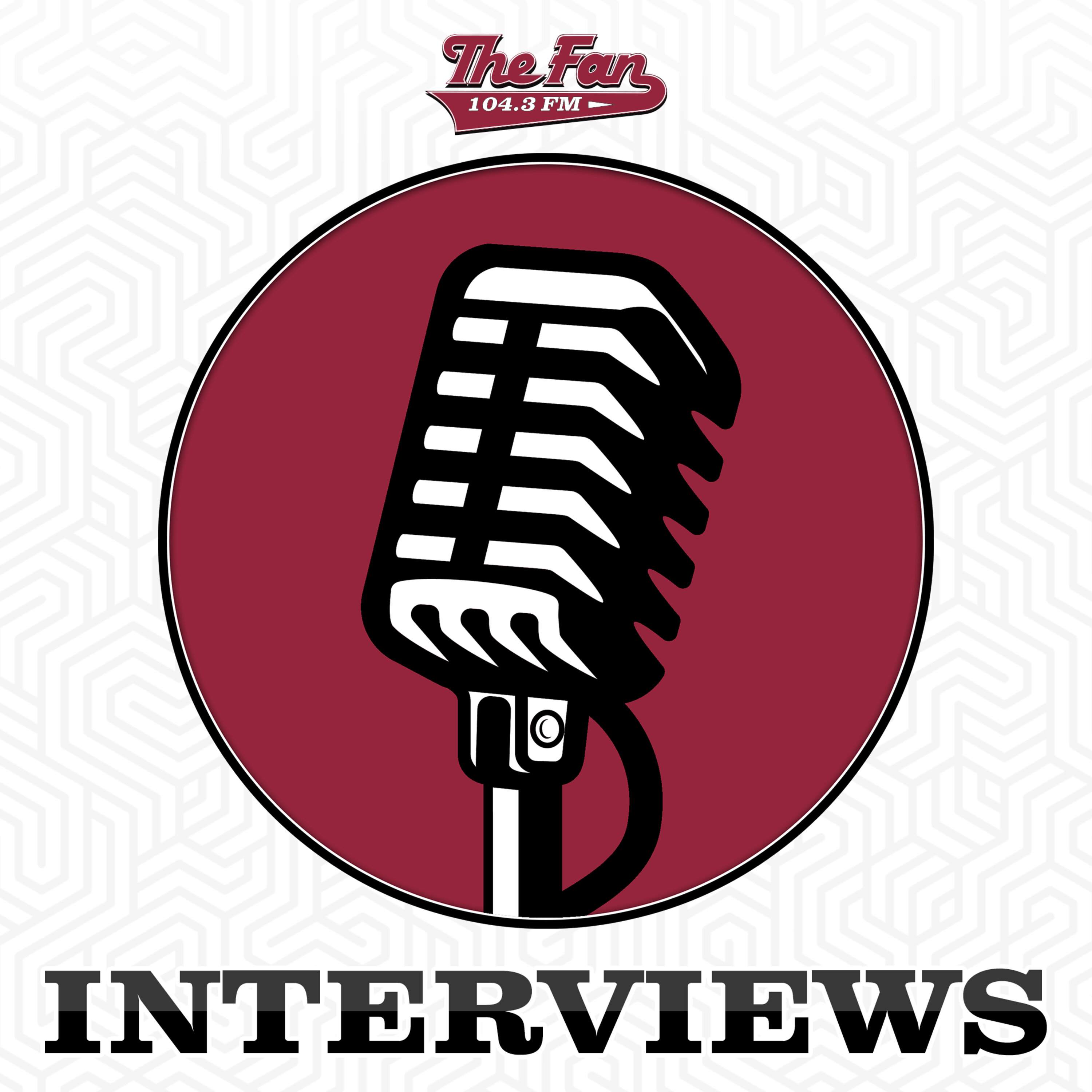 The Fan Interviews Cover Image